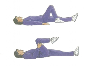 exercises to combat back pain